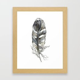 Barb's Feather Framed Art Print