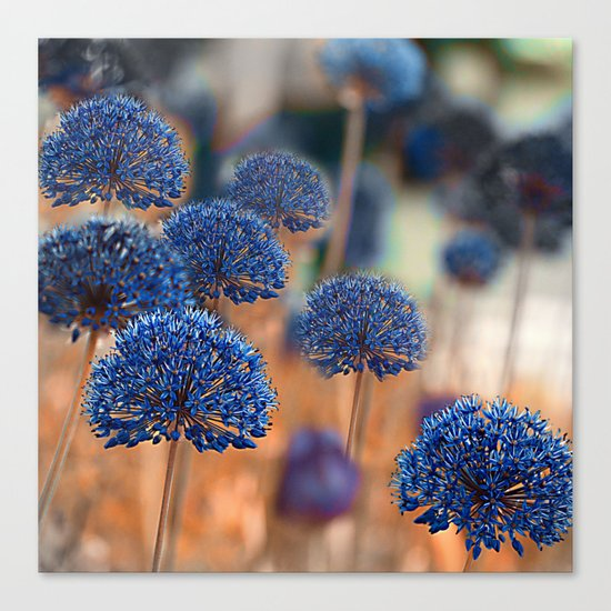 Blue ball flowers. Canvas Print