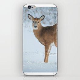 Deer in the snow iPhone Skin