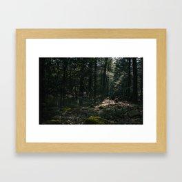 DWELL Framed Art Print