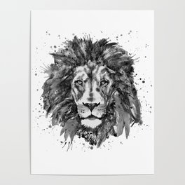 Black and White Lion Head Poster