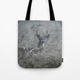 Foggy Morning Buck Tote Bag