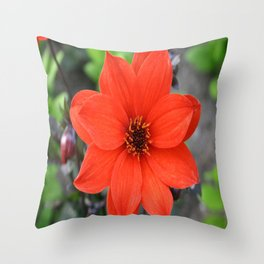 Flower in BC Throw Pillow
