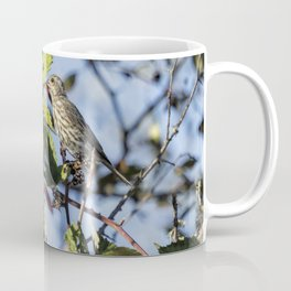 Female Purple Finch Coffee Mug