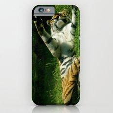 Resting Tiger iPhone 6s Slim Case