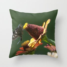Longtail Skipper Throw Pillow