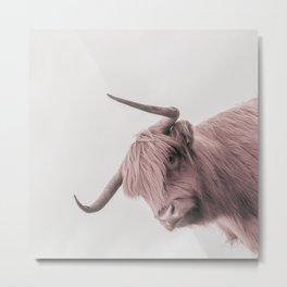 Turn Back Bull Metal Print