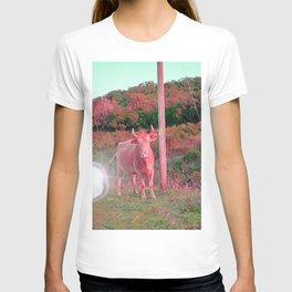 POP COW T-shirt