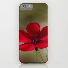Linum Slim Case iPhone 6s