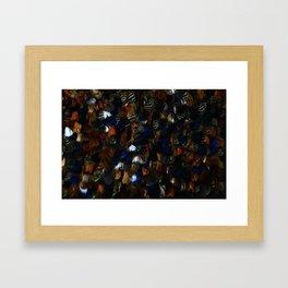 Colourful Feather Cloak Framed Art Print