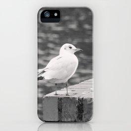 Gull Photograph iPhone Case