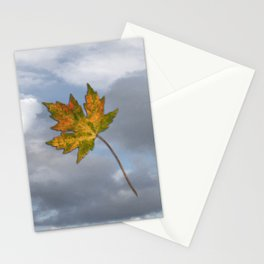 Maple leaf in autumn Stationery Cards