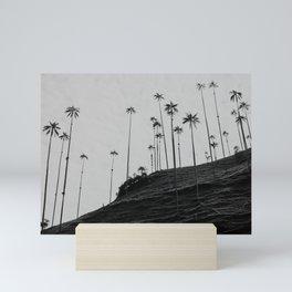 Wax Palms at Cocora Valley   Colombia photo   Fine Art Print Mini Art Print