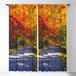 Paved Autumn Path Blackout Curtain