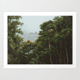 Deep Dark Rainforest Art Print