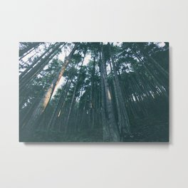 Evergreen State Metal Print