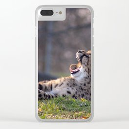 CHEETAH CUBS LAYING TOGETHER Clear iPhone Case