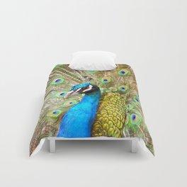 Male Peacock Comforters