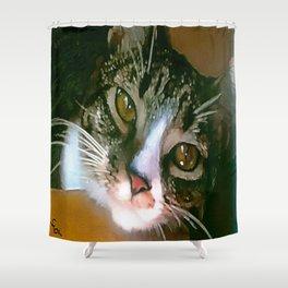 FAB! FLA!! FELINE!!! Shower Curtain