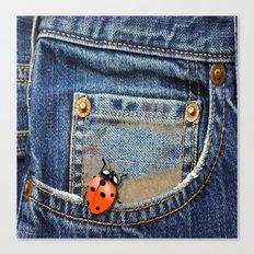Lady Bug in My Pocket Canvas Print
