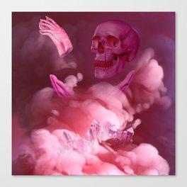 Grab the beta–c Canvas Print
