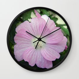 Pink Musk Mallow Wall Clock