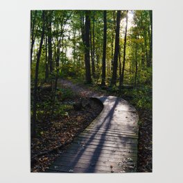 Boardwalk through the forest in southern Ontario Poster
