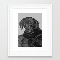 dachshund Framed Art Prints featuring Dachshund by Natasha Maiklem