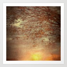 Amber Dawn Art Print