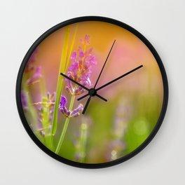 Towards the summer Wall Clock
