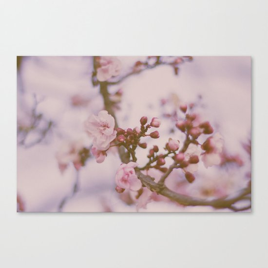 Small & Soft II Canvas Print
