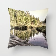 Reflective Passage Throw Pillow