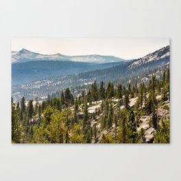 High Sierra Forest Canvas Print