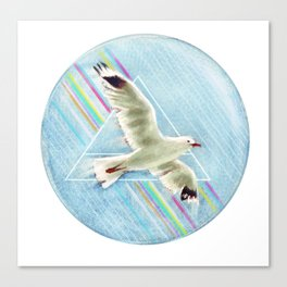 30 seconds to seagull Canvas Print
