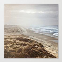 Heceta Beach Canvas Print