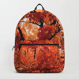 Red Fall 2 Backpack