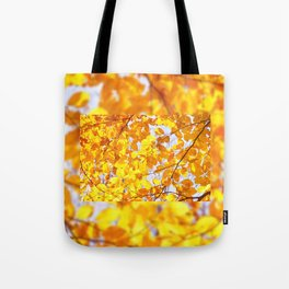 Autumn beech Fagus foliage yellow Tote Bag