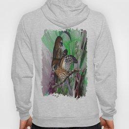 Boobook Owls Hoody