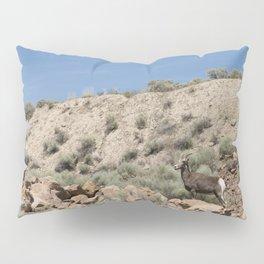 Bighorn Sheep 02 Pillow Sham