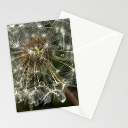 Extreme Macro image of a Dandelion Seed head Stationery Cards