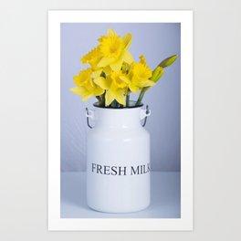 Daffodils in Fresh Milk Jug Art Print
