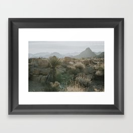 Joshua Tree National Park at Sunrise Framed Art Print