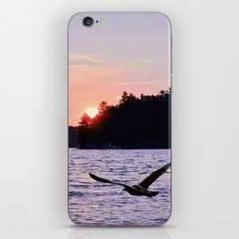 Fly into the Sunset iPhone Skin