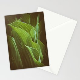 Leaf and Learn 2 Stationery Cards