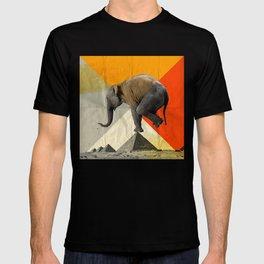 Balance of the Pyramids T-shirt