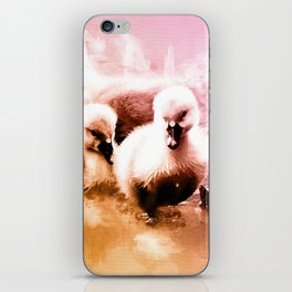 Cygnets Huddle Together iPhone Skin