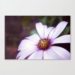 Vintage Flower Canvas Print