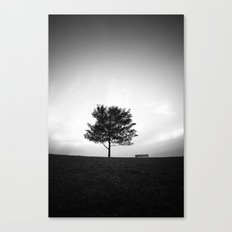 Tree and Bench Canvas Print