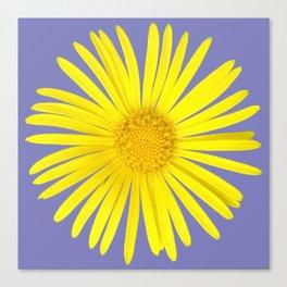 Daisy doronicum orientale Canvas Print