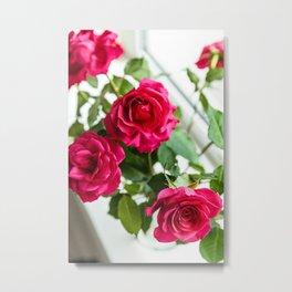 Fresh Red Roses Metal Print